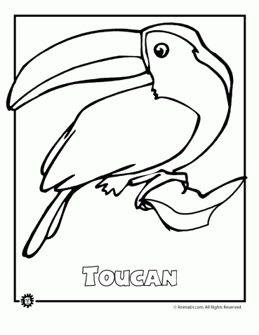 colouring pictures of extinct animals endangered animals coloring pages animals from north pictures colouring of extinct animals