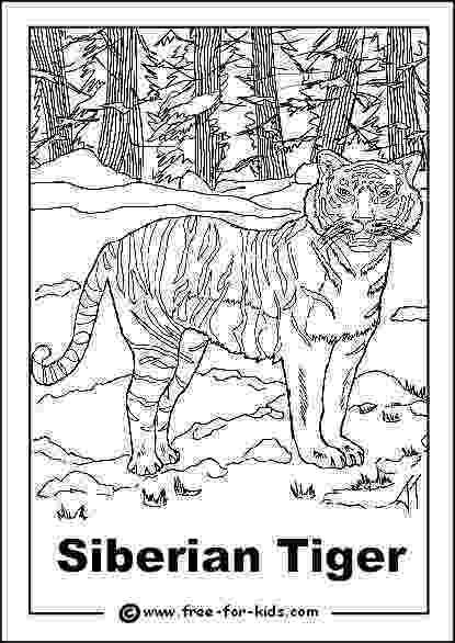 colouring pictures of extinct animals endangered animals colouring pages pictures of extinct colouring animals