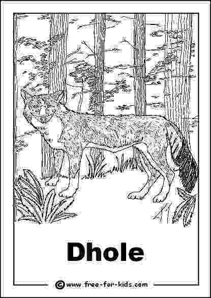 colouring pictures of extinct animals endangered species coloring pages coloring home of pictures colouring animals extinct