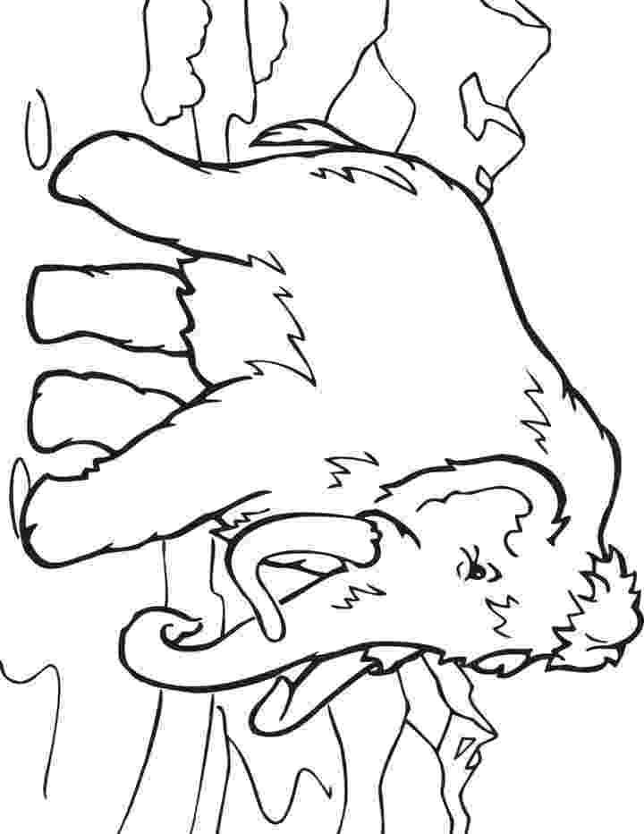 colouring pictures of extinct animals this coloring page for kids features a wooly mammoth extinct colouring animals pictures of