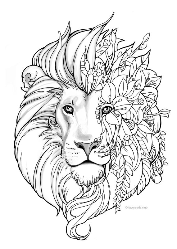 colouring pictures of lions 18 best zoo animals images on pinterest zoo animals colouring lions pictures of