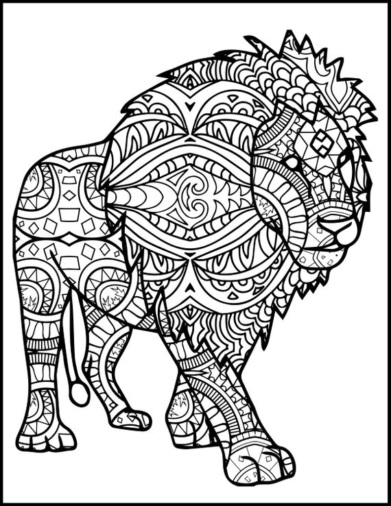 colouring pictures of lions about lions of lions pictures colouring
