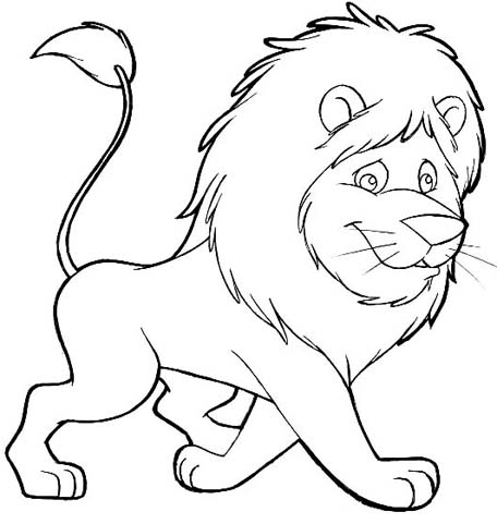 colouring pictures of lions colour drawing free wallpaper disney cartoon the lion of colouring lions pictures