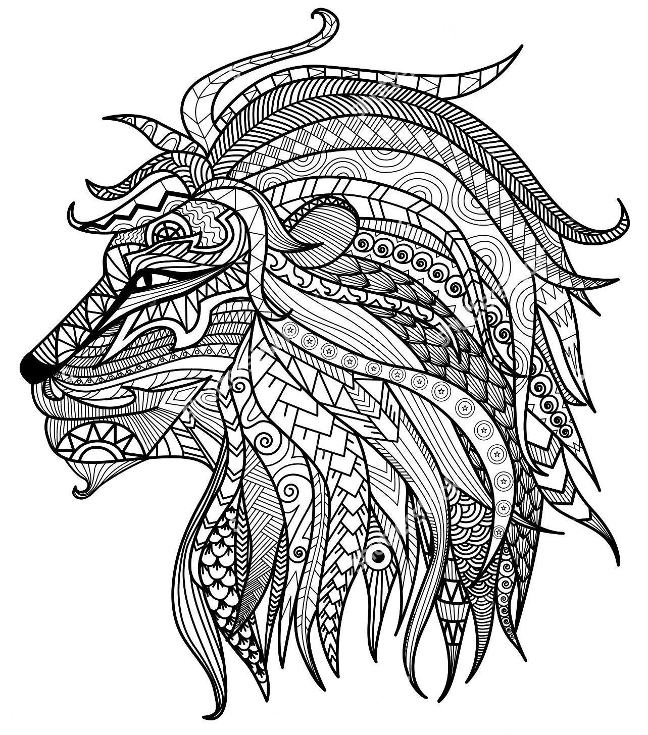colouring pictures of lions fun learn free worksheets for kid ภาพระบายส the lion lions pictures colouring of