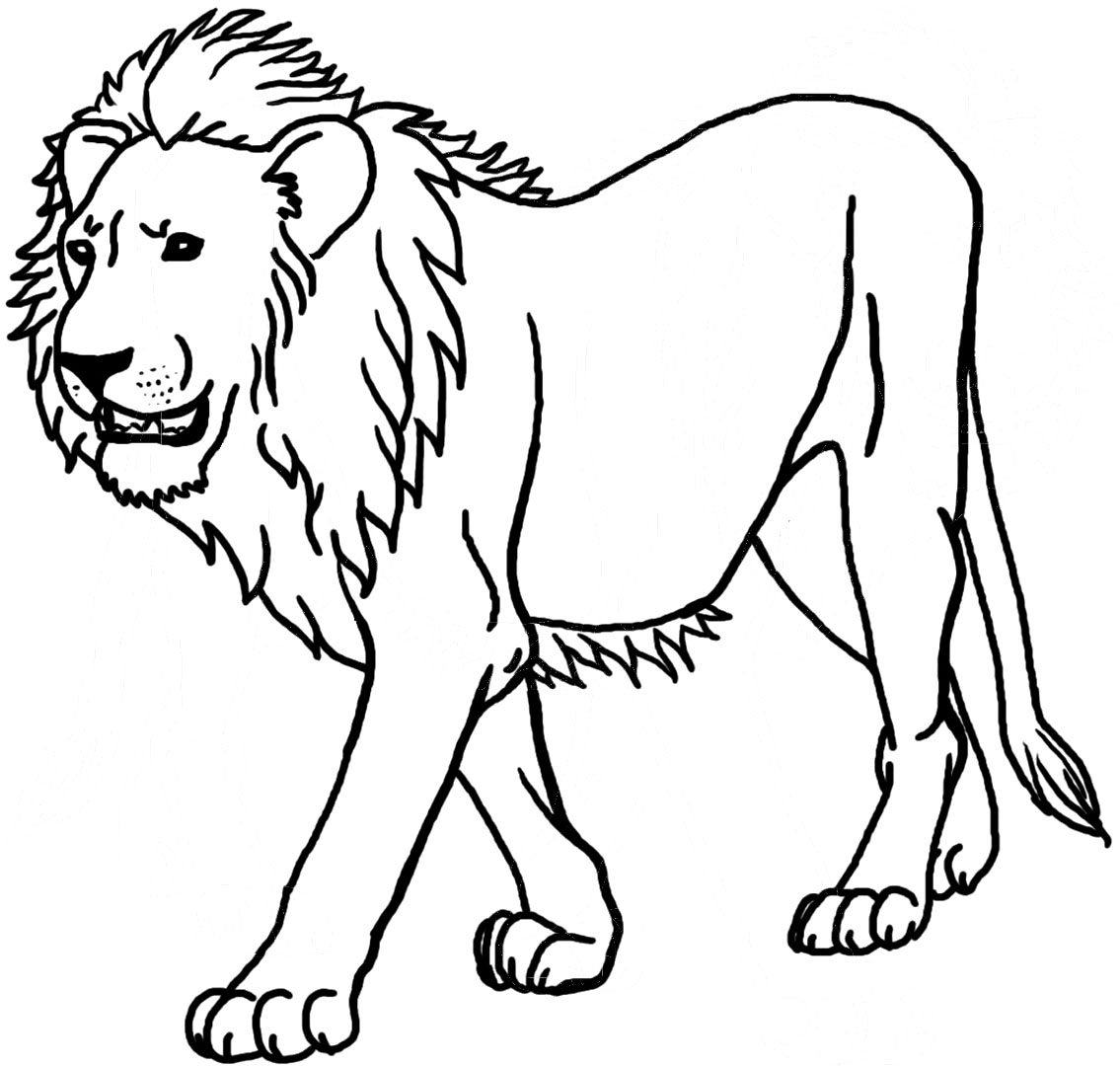 colouring pictures of lions lion coloring pages clipart panda free clipart images pictures lions colouring of