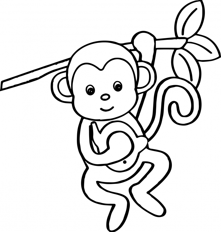 colouring pictures of monkeys hanging monkey template free download on clipartmag of pictures colouring monkeys