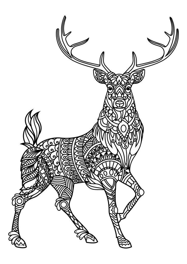 colouring sheets animals animal coloring pages pdf boyama sayfaları mandala animals sheets colouring