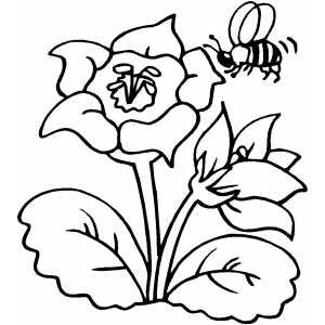 colouring sheets flowers and plants flower with bee coloring page plants colouring flowers sheets and