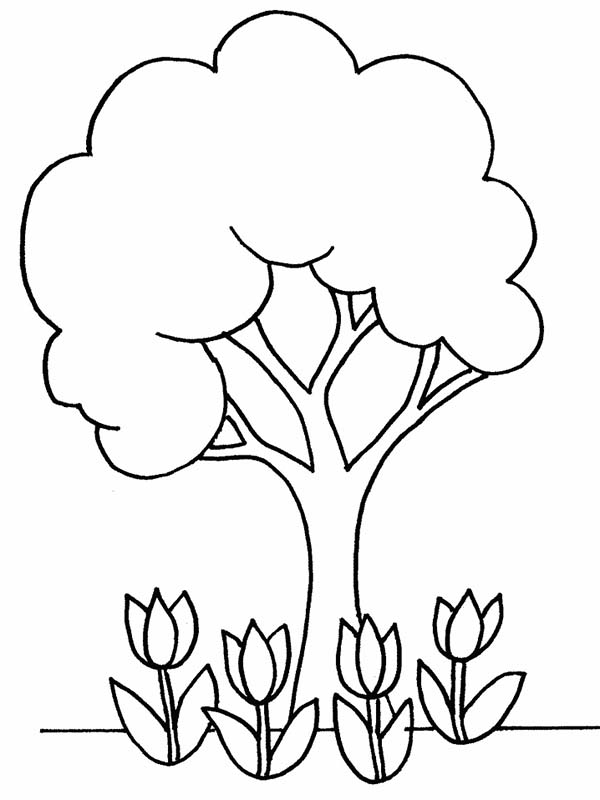 colouring sheets flowers and plants planting coloring pages coloring home plants colouring sheets flowers and
