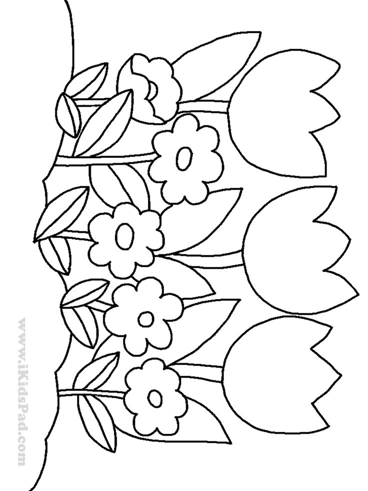 colouring sheets flowers and plants row of tulip flowers coloring pages for kids desenhos plants colouring and sheets flowers