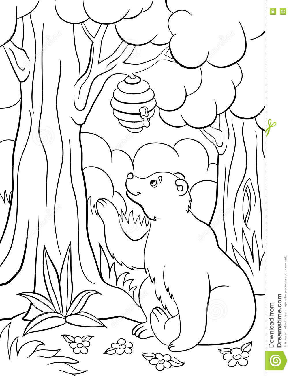 colouring wild animals coloring pages wild animals cute bear looks at the hive wild colouring animals
