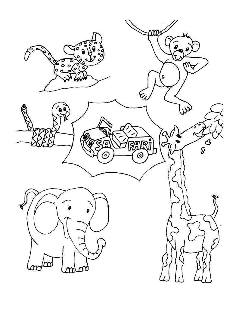 colouring wild animals wild animal coloring pages best coloring pages for kids wild colouring animals