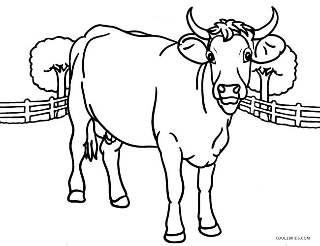 cow coloring page free printable cow coloring pages for kids page coloring cow 1 1