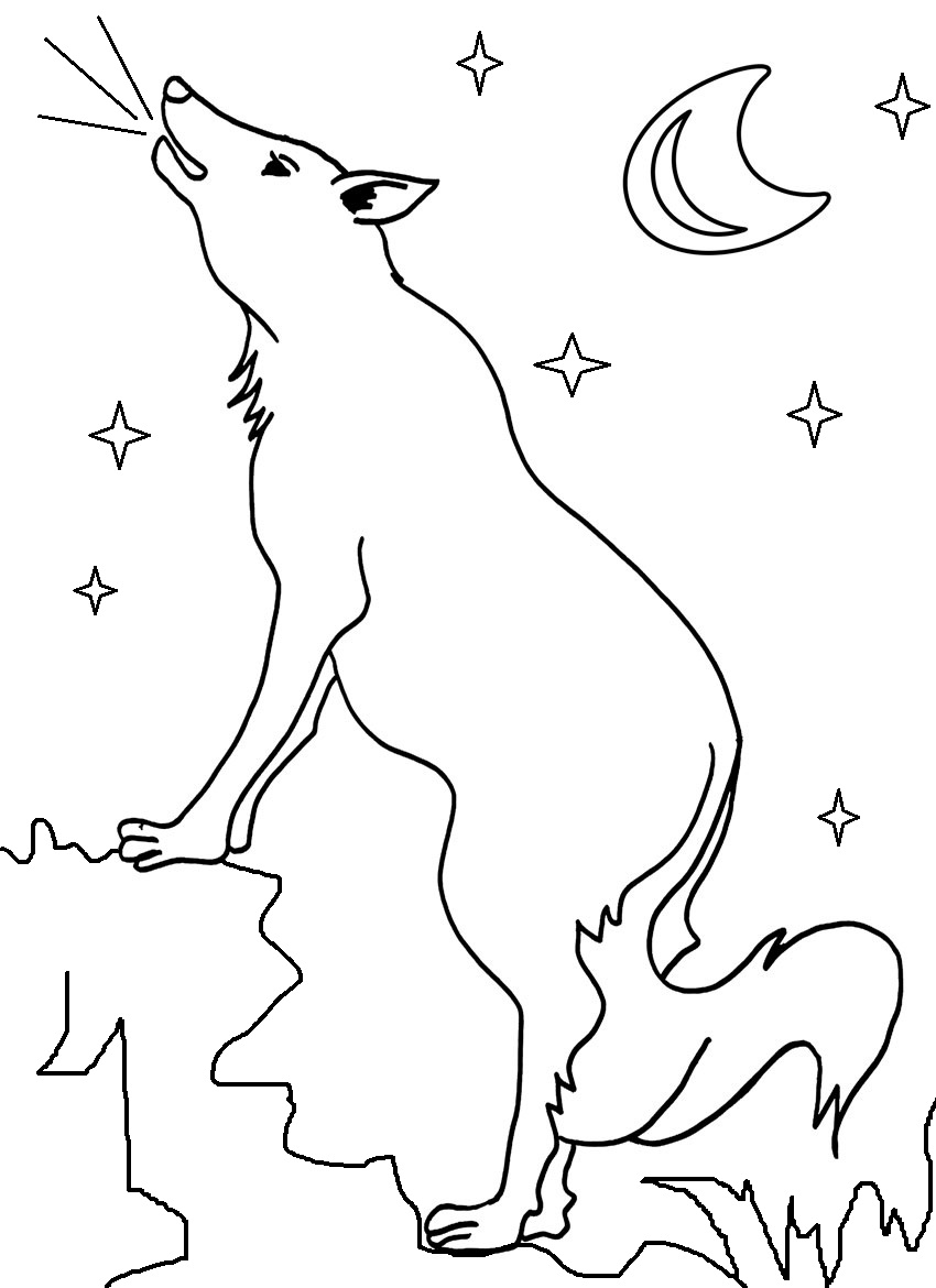 coyote pictures to print free coyote coloring page coyote pictures to print