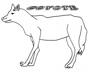 coyote pictures to print printable coyote coloring pages for kids cool2bkids pictures print to coyote
