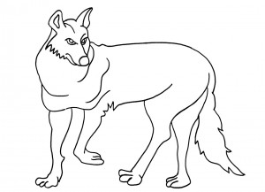coyote pictures to print printable coyote coloring pages for kids cool2bkids print coyote pictures to