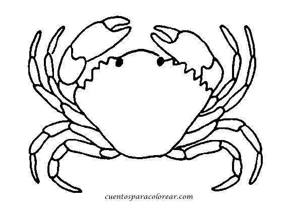 crustaceos dibujos crustaceos para pintar imagui crustaceos dibujos