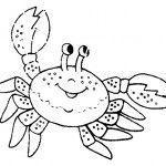 crustaceos dibujos dibujos de crustáceos para colorear crustaceos dibujos