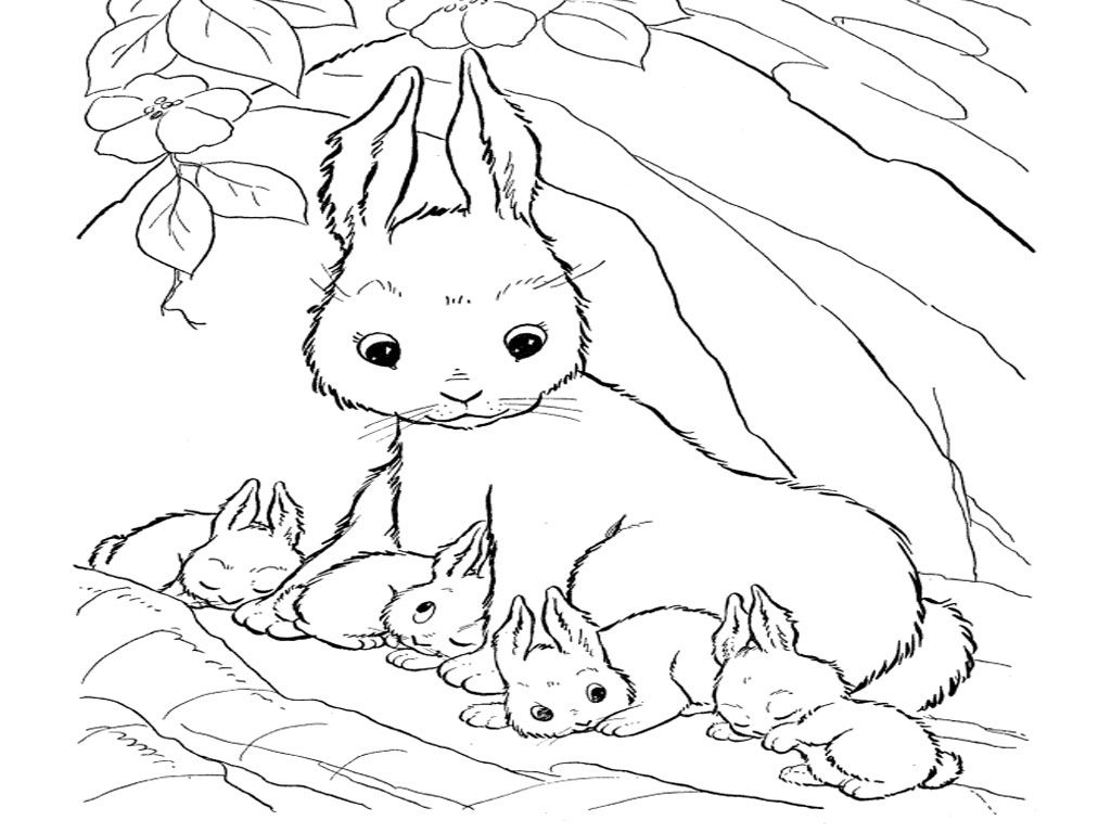 cute bunny coloring pages cute bunny coloring pages to download and print for free pages cute coloring bunny 1 1