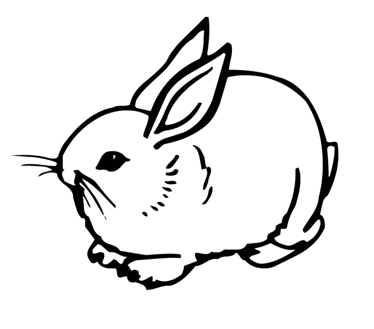 cute bunny coloring pages rabbits coloring pages free coloring pages cute coloring bunny pages