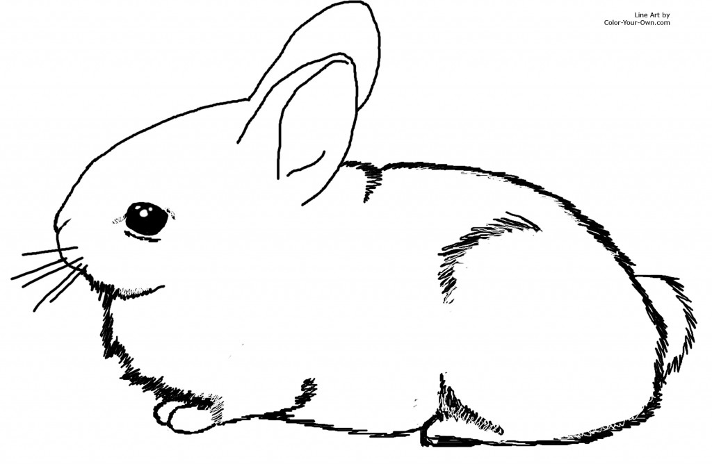 cute bunny pictures to color cute easter bunny coloring pages getcoloringpagescom to bunny pictures cute color