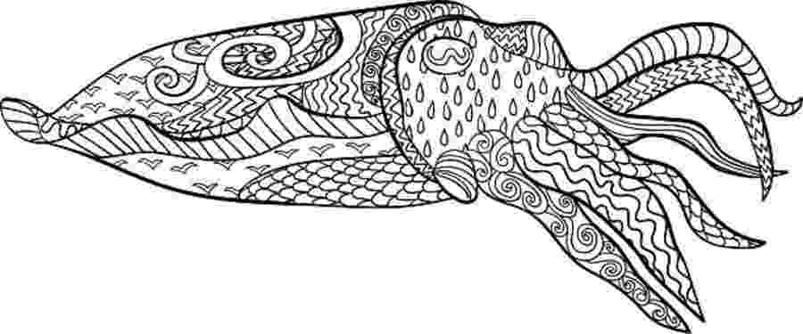 cuttlefish coloring pages cuttlefish clipart 1189819 illustration by alex bannykh coloring pages cuttlefish
