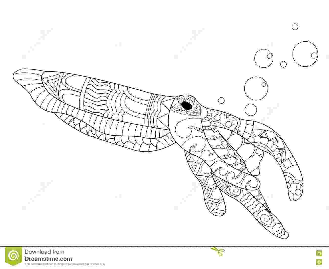 cuttlefish coloring pages items similar to cephalopods a coloring book of octopus coloring pages cuttlefish