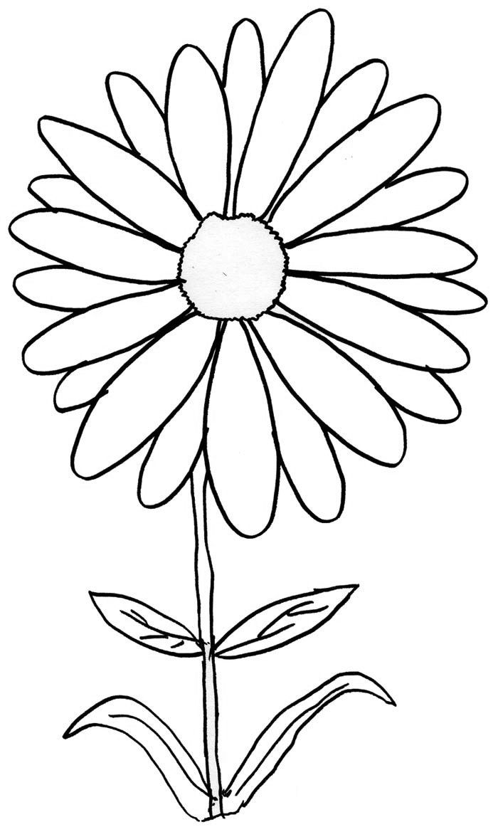 daisy flower colouring pages daisy coloring pages 15 customizable pdfs colouring daisy flower pages