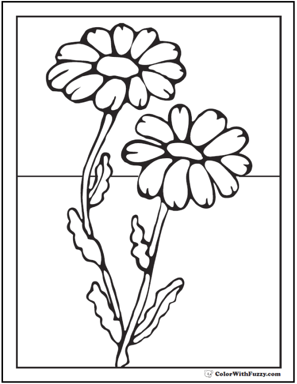 daisy flower colouring pages daisy coloring pages best coloring pages for kids daisy pages colouring flower