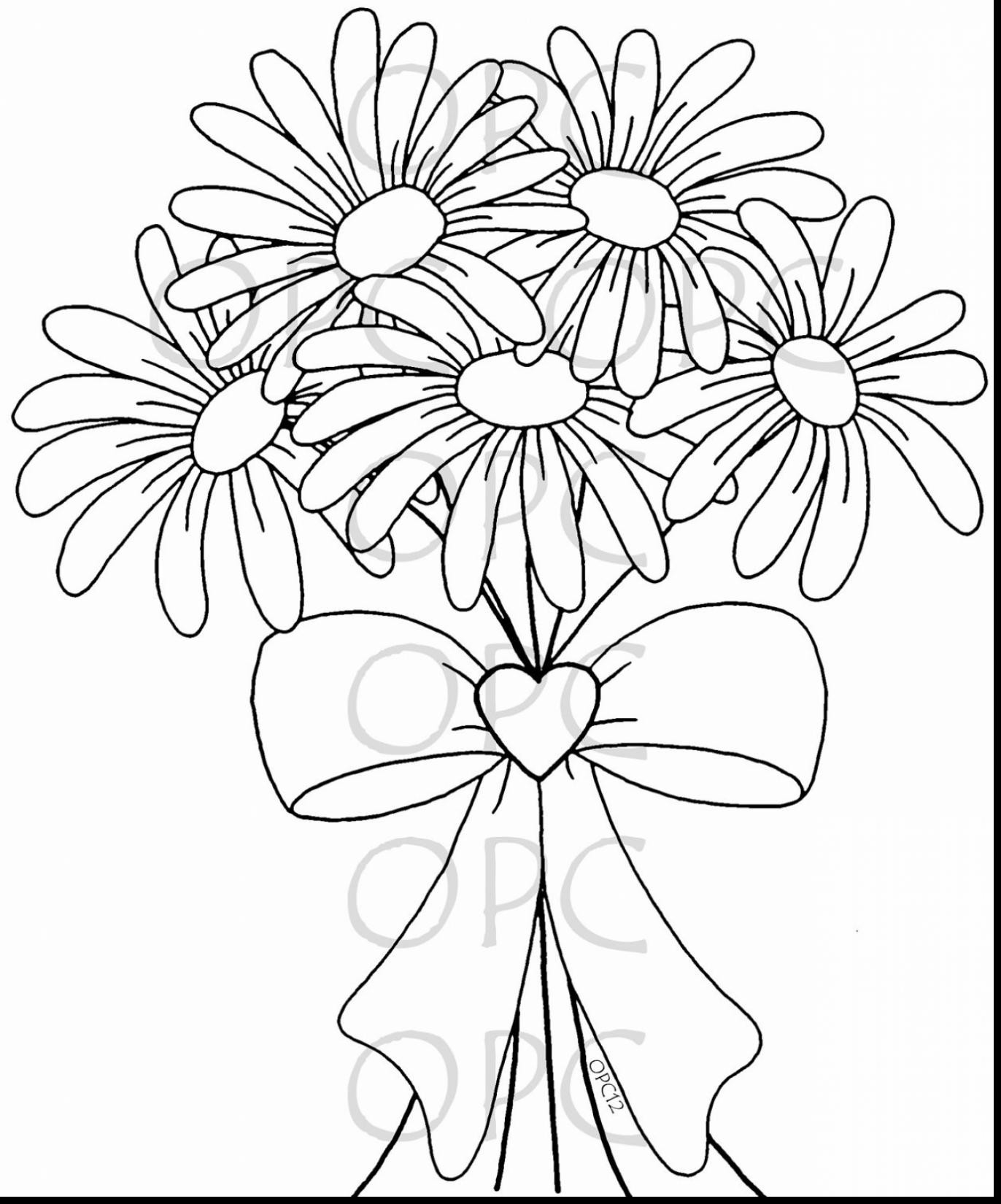 daisy flower colouring pages daisy coloring pages colouring pages daisy flower