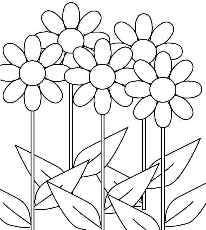 daisy flower colouring pages daisy flower garden journey coloring pages best coloring pages daisy flower colouring