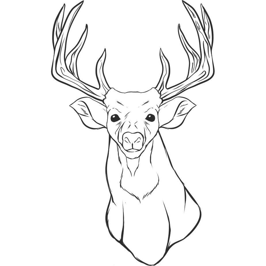 deer coloring page 45 deer templates animal templates free premium page coloring deer