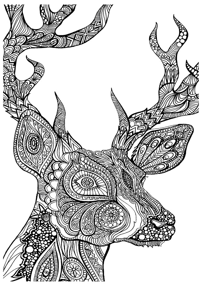 deer coloring page deer coloring pages coloring pages to print coloring deer page