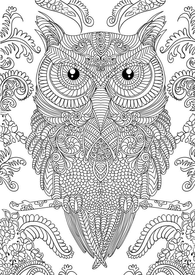 detailed coloring pictures icolor quotfancy bugsquot detailed coloring pages ladybug coloring detailed pictures