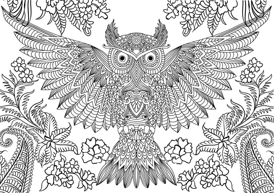 detailed coloring pictures twenty adult coloring pages printable adult coloring pictures detailed coloring