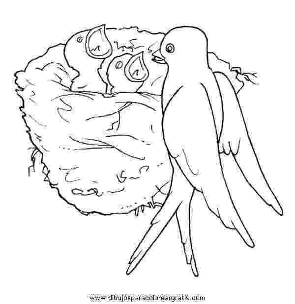 dibujos de golondrinas fliegen schwalben kontur birds feathers wandsticker ebay de dibujos golondrinas