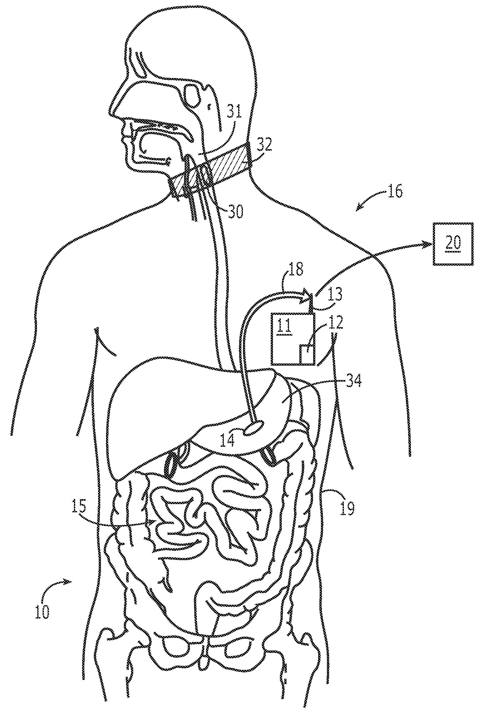 digestive system coloring sheet pin en inspirinschool system coloring digestive sheet