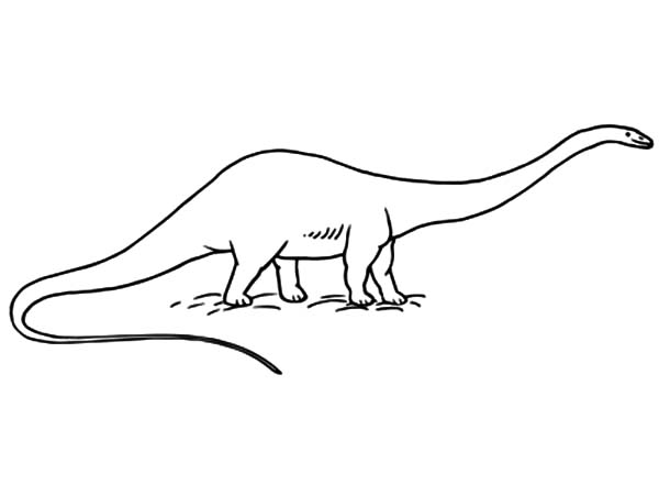 diplodocus coloring page coloring pages may 2007 diplodocus page coloring