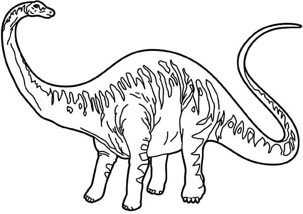 diplodocus coloring page diplodocus netart diplodocus coloring page