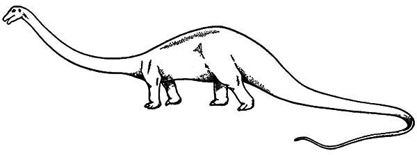 diplodocus coloring page diplodocus netart page diplodocus coloring 1 1