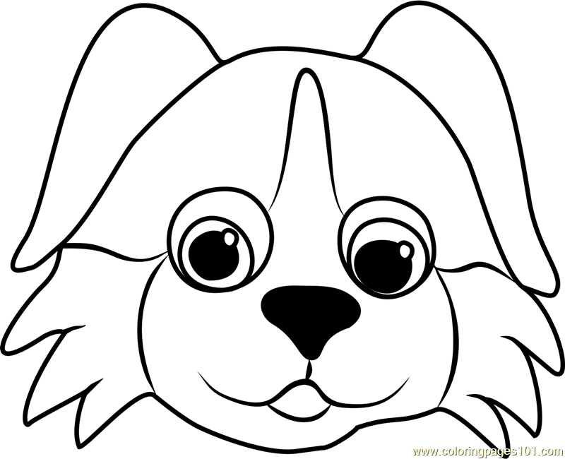 dog face coloring pages bernese puppy face coloring page free pet parade face coloring pages dog