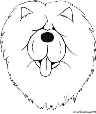 dog face coloring pages boxer dog face coloring pages pages face coloring dog