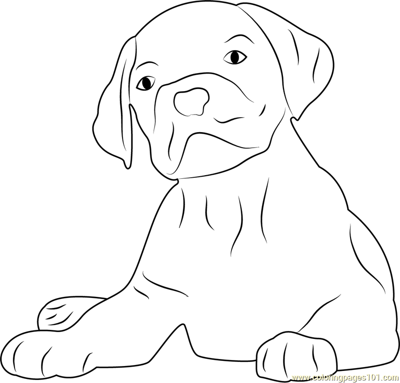 dog face coloring pages lovely dog face coloring page free dog coloring pages dog coloring pages face