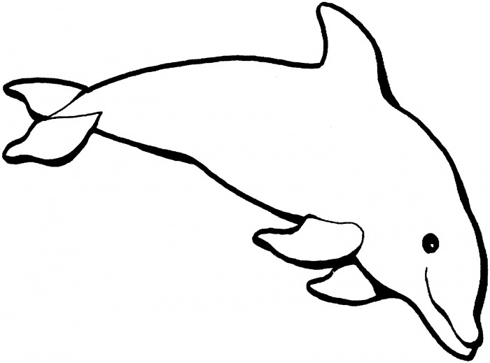 dolphin coloring page dolphin template animal templates free premium templates dolphin page coloring 1 2