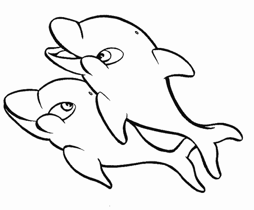dolphin coloring page free coloring pages of dolphins to the print dolphin page coloring
