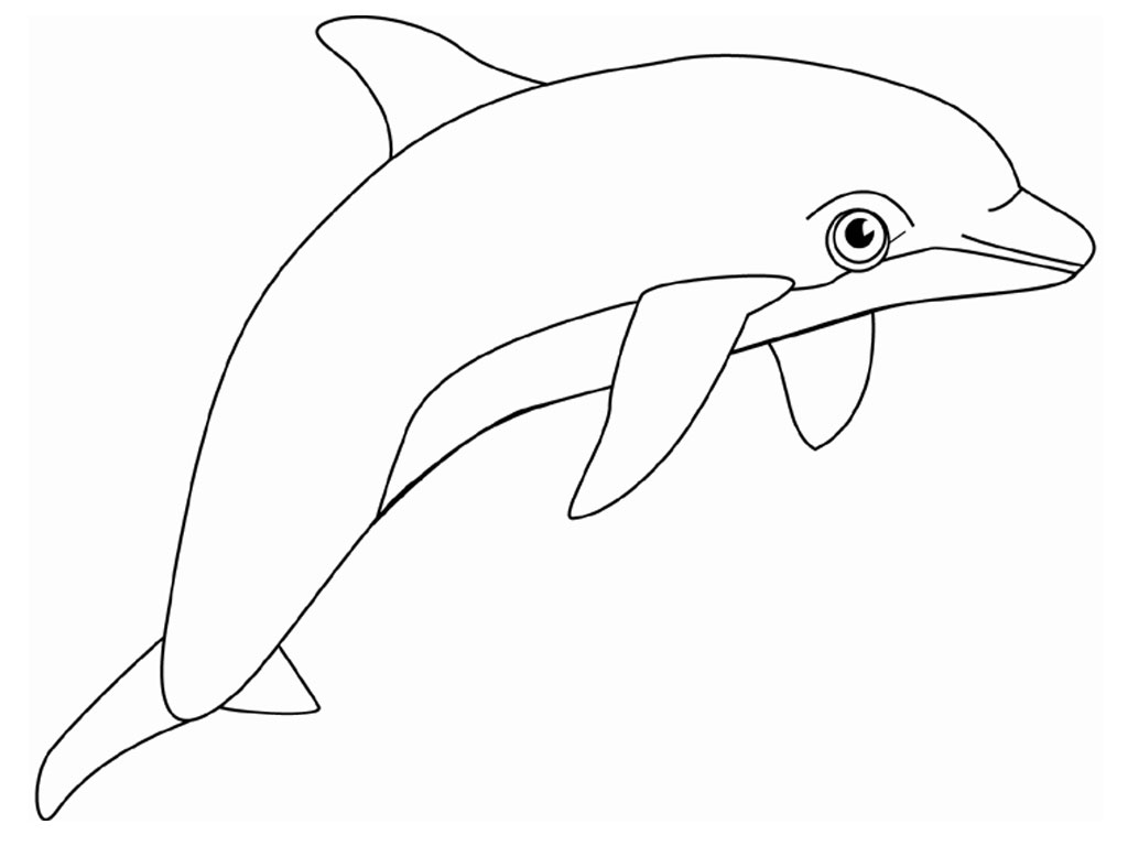 dolphin coloring page free printable dolphin coloring pages for kids dolphin coloring page 1 4