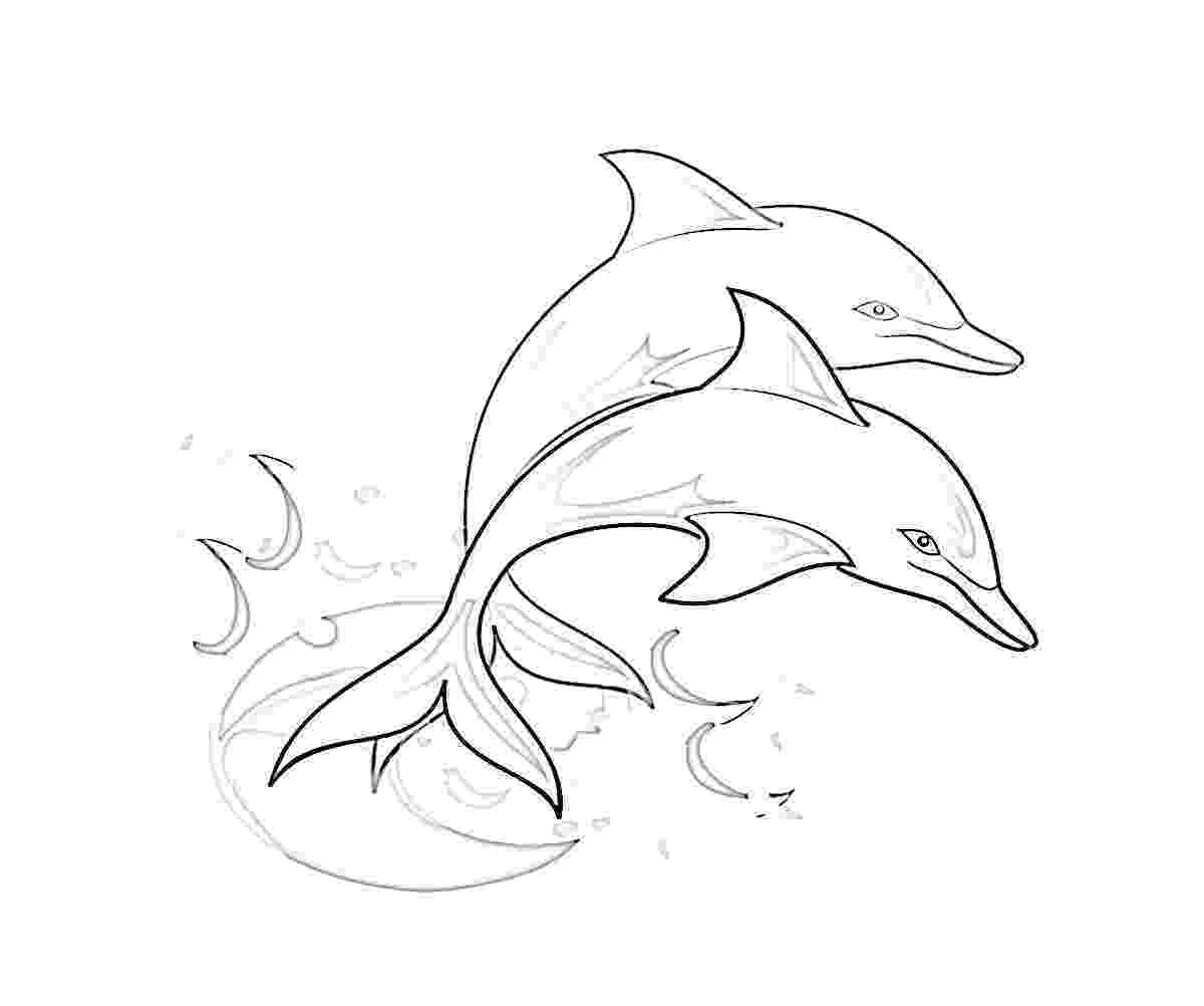 dolphin coloring pages to print out free printable dolphin pictures download free clip art pages coloring print dolphin out to