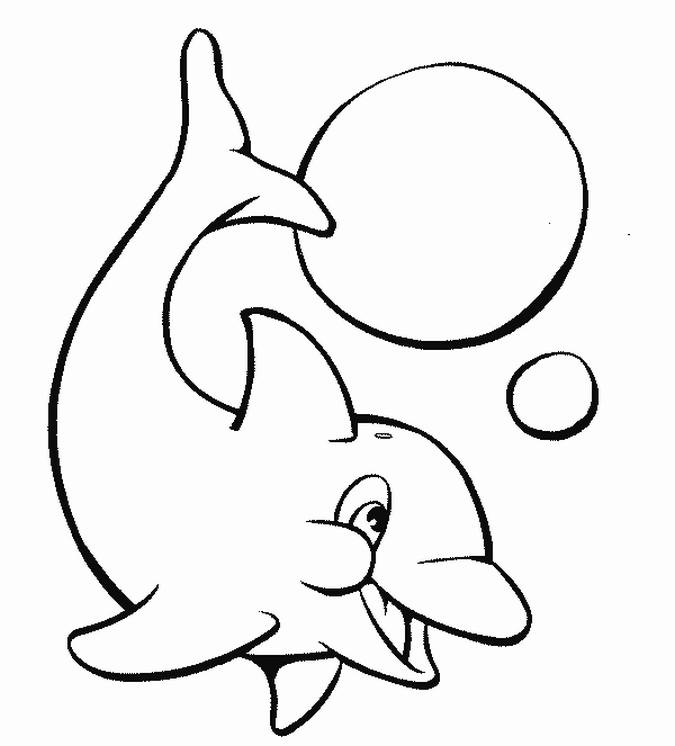 dolphin coloring printables free dolphin coloring pages dolphin printables coloring