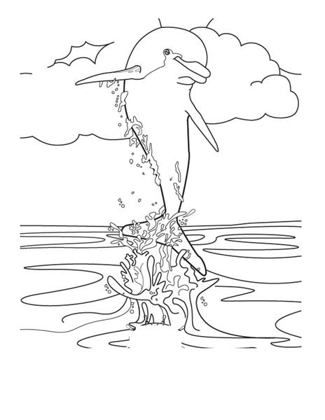 dolphin coloring printables leaping dolphins coloring page educationcom printables dolphin coloring