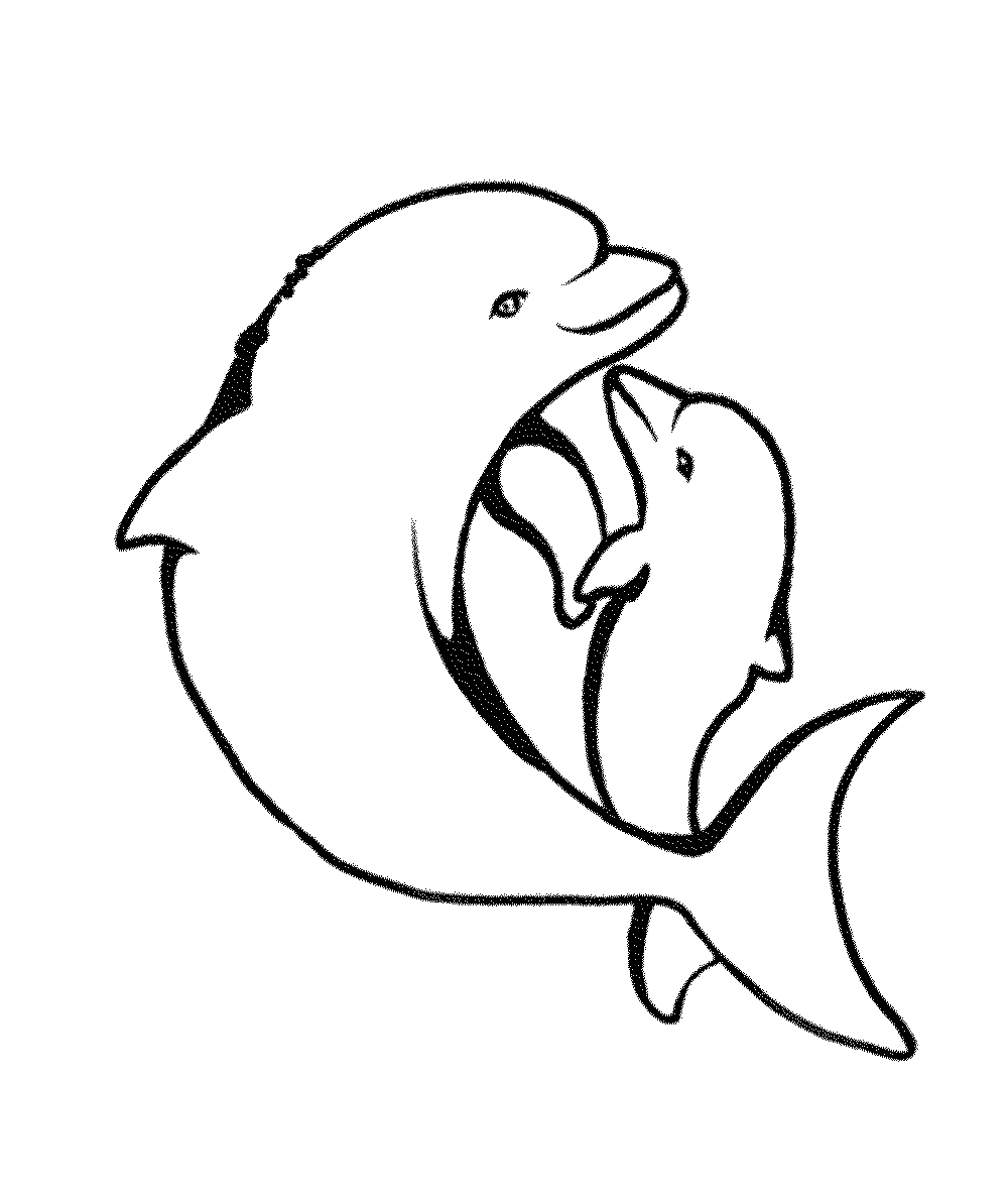 dolphin coloring printables lovely dolphin coloring pages hellokidscom printables coloring dolphin